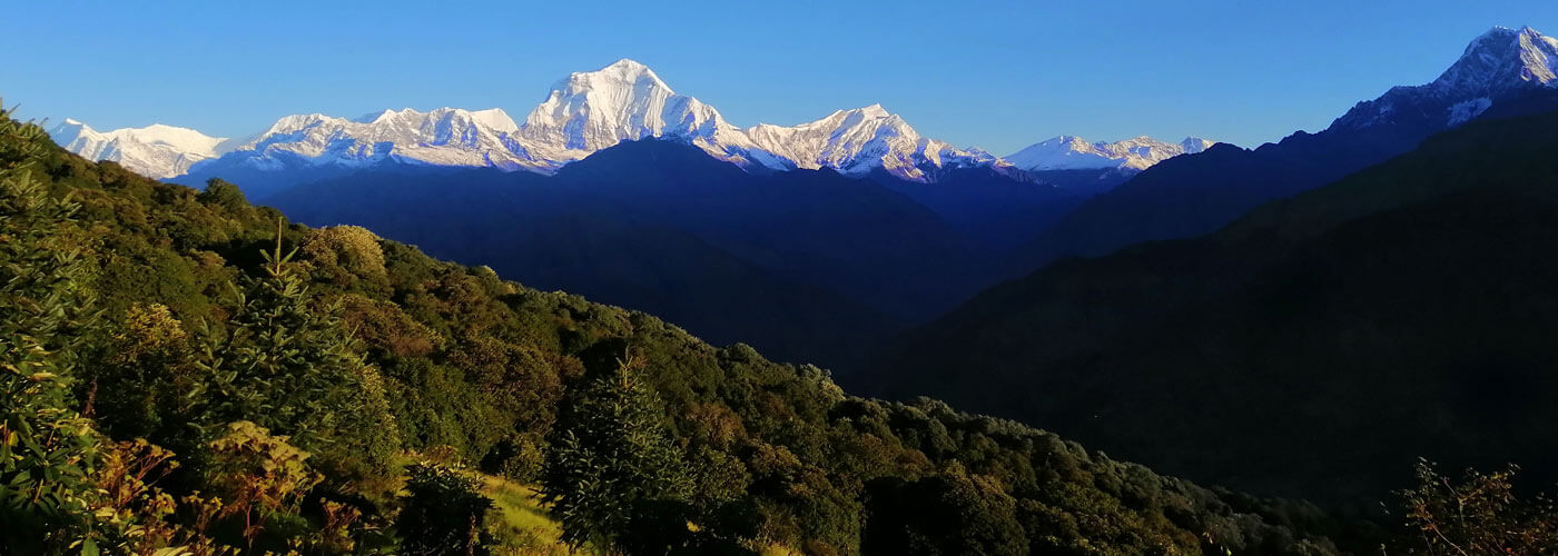 Poon Hill Trek